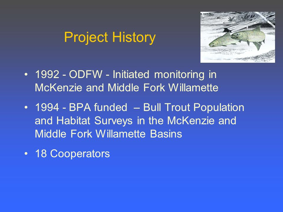 Project History ODFW - Initiated monitoring in McKenzie and Middle Fork Willamette BPA funded – Bull Trout Population and Habitat Surveys in the McKenzie and Middle Fork Willamette Basins 18 Cooperators