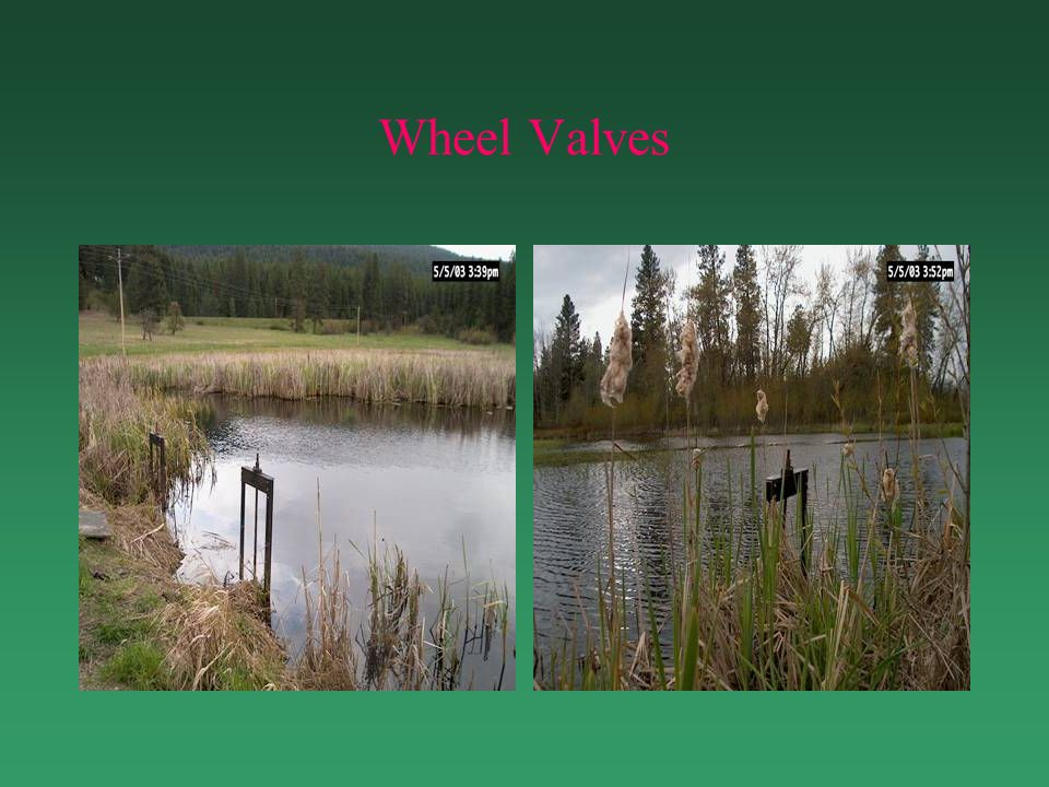 Wheel Valves