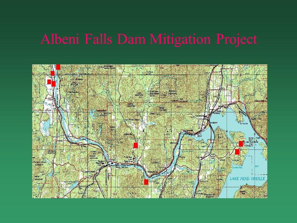 Albeni Falls Dam Mitigation Project