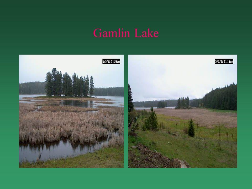 Gamlin Lake