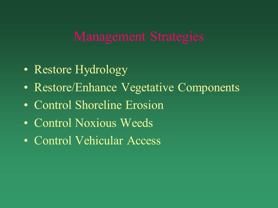 Management Strategies Restore Hydrology Restore/Enhance Vegetative Components Control Shoreline Erosion Control Noxious Weeds Control Vehicular Access