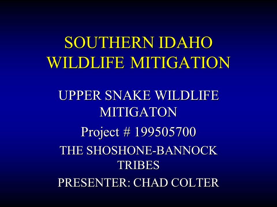 SOUTHERN IDAHO WILDLIFE MITIGATION UPPER SNAKE WILDLIFE MITIGATON Project # 199505700 THE SHOSHONE-BANNOCK TRIBES PRESENTER: CHAD COLTER
