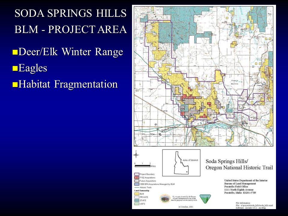 SODA SPRINGS HILLS BLM - PROJECT AREA Deer/Elk Winter Range Deer/Elk Winter Range Eagles Eagles Habitat Fragmentation Habitat Fragmentation