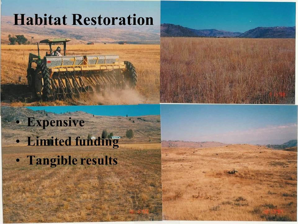 Habitat Restoration Expensive Limited funding Tangible results