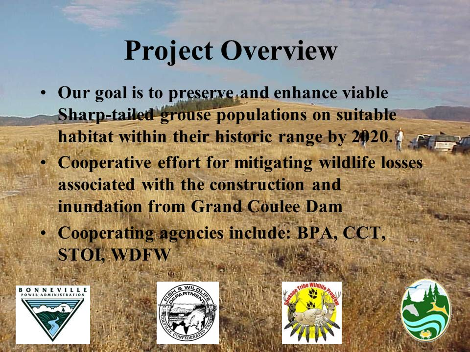 Project Overview Our goal is to preserve and enhance viable Sharp-tailed grouse populations on suitable habitat within their historic range by 2020. C