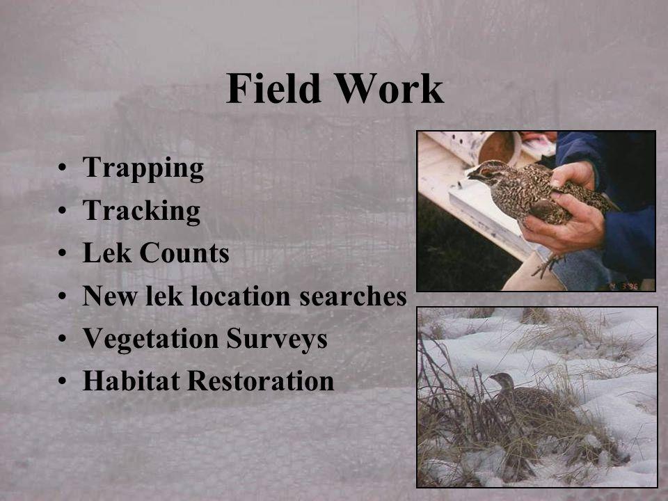 Field Work Trapping Tracking Lek Counts New lek location searches Vegetation Surveys Habitat Restoration