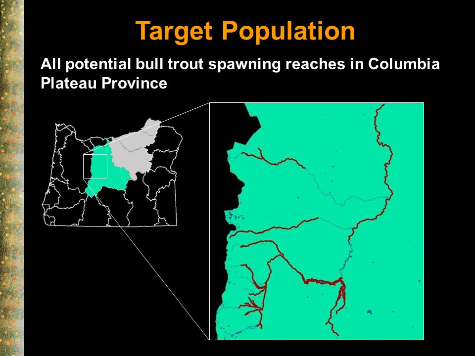 Target Population All potential bull trout spawning reaches in Columbia Plateau Province