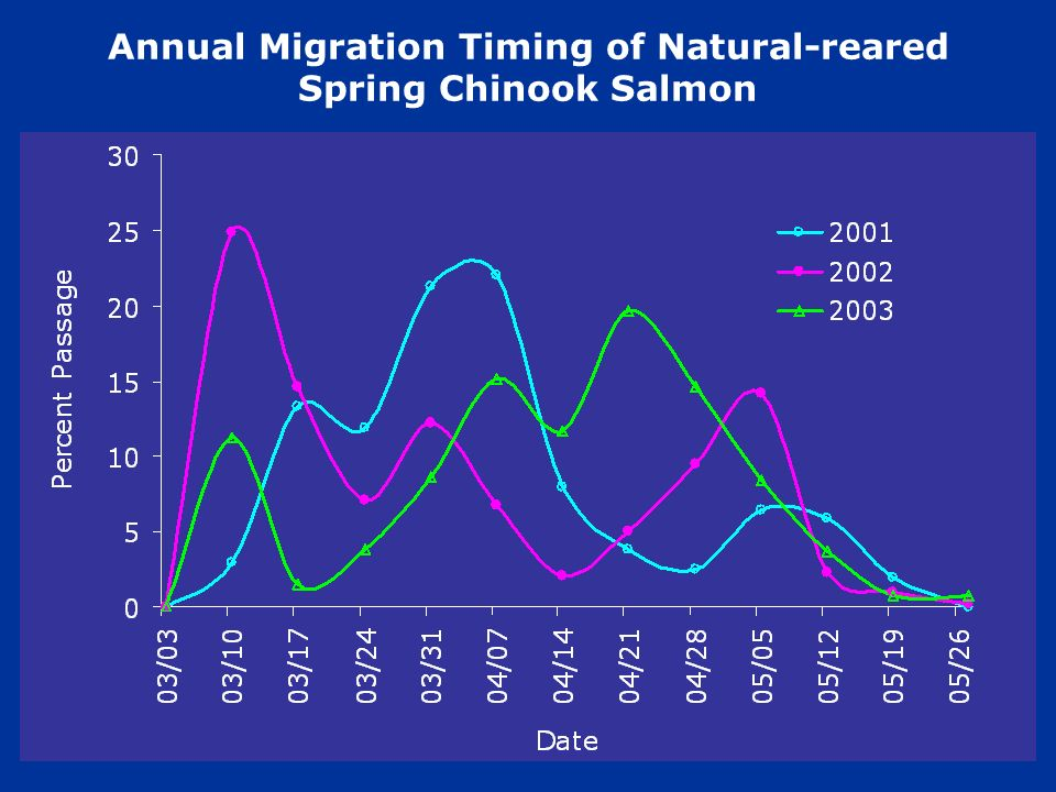 Annual Migration Timing of Natural-reared Spring Chinook Salmon Date