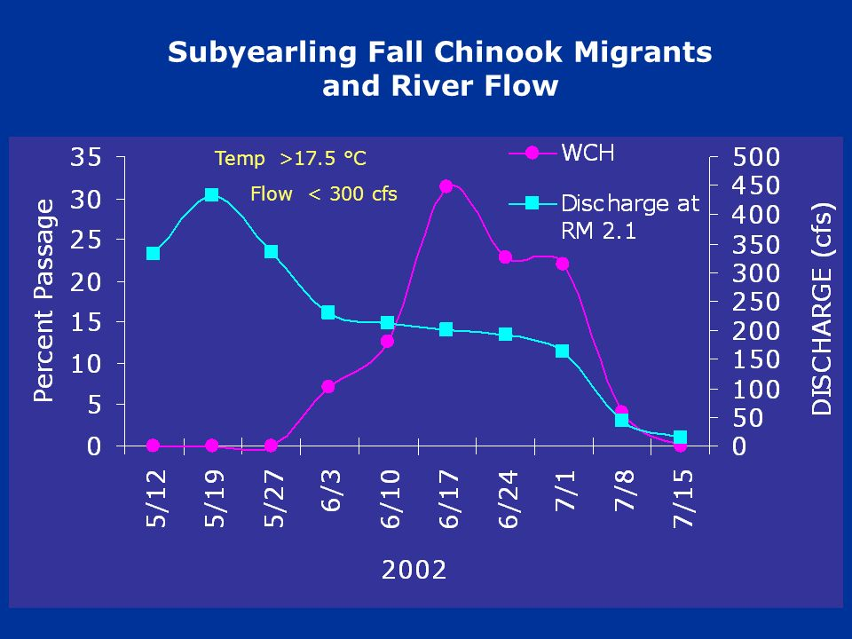 Subyearling Fall Chinook Migrants and River Flow Temp>17.5 °C Flow< 300 cfs