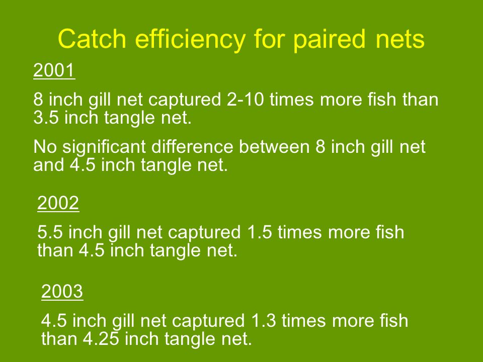 Catch efficiency for paired nets 2001 8 inch gill net captured 2-10 times more fish than 3.5 inch tangle net.