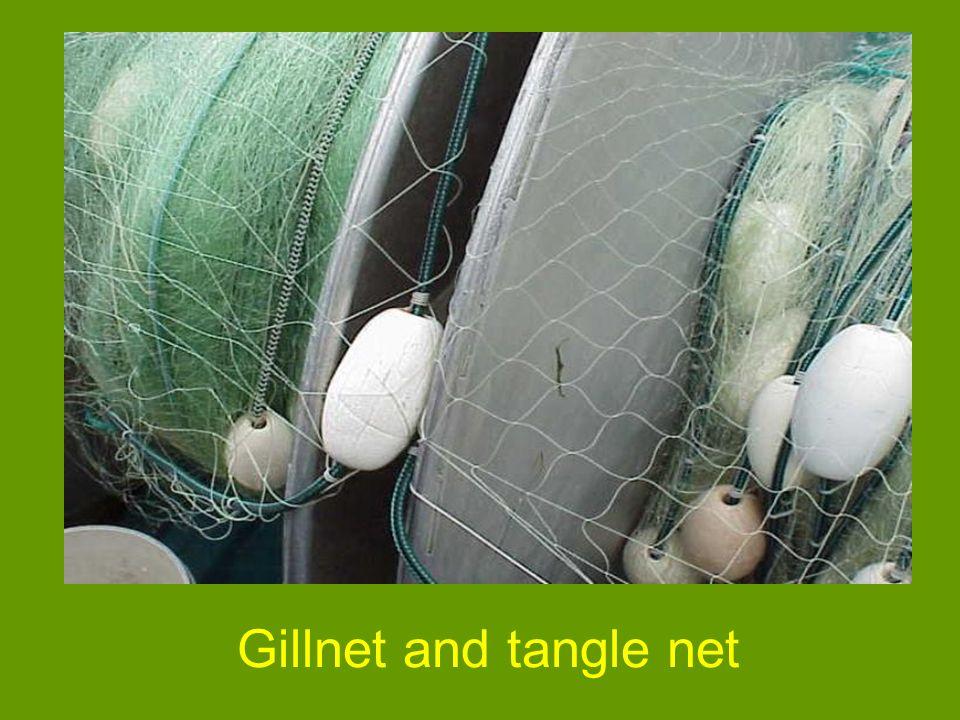 Gillnet and tangle net