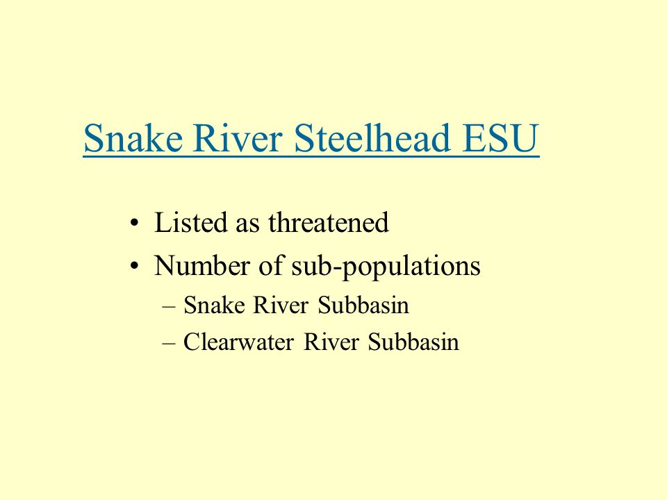 Snake River Steelhead ESU Listed as threatened Number of sub-populations –Snake River Subbasin –Clearwater River Subbasin