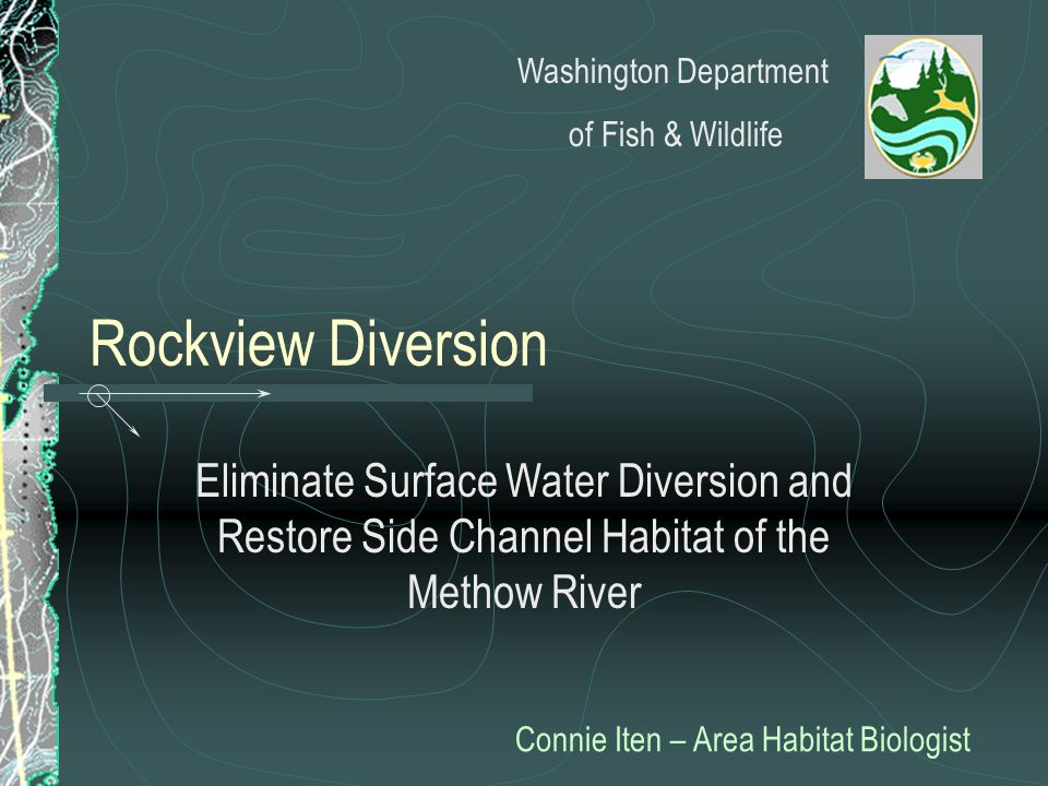 Rockview Diversion Eliminate Surface Water Diversion and Restore Side Channel Habitat of the Methow River Connie Iten – Area Habitat Biologist Washing