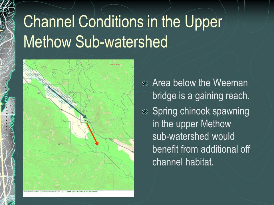 Channel Conditions in the Upper Methow Sub-watershed Area below the Weeman bridge is a gaining reach. Spring chinook spawning in the upper Methow sub-