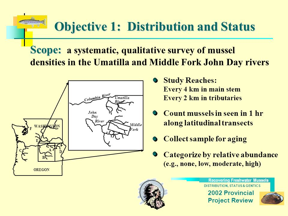 DISTRIBUTION, STATUS & GENTICS Recovering Freshwater Mussels 2002 Provincial Project Review Objective 1: Distribution and Status Scope: Scope: a syste