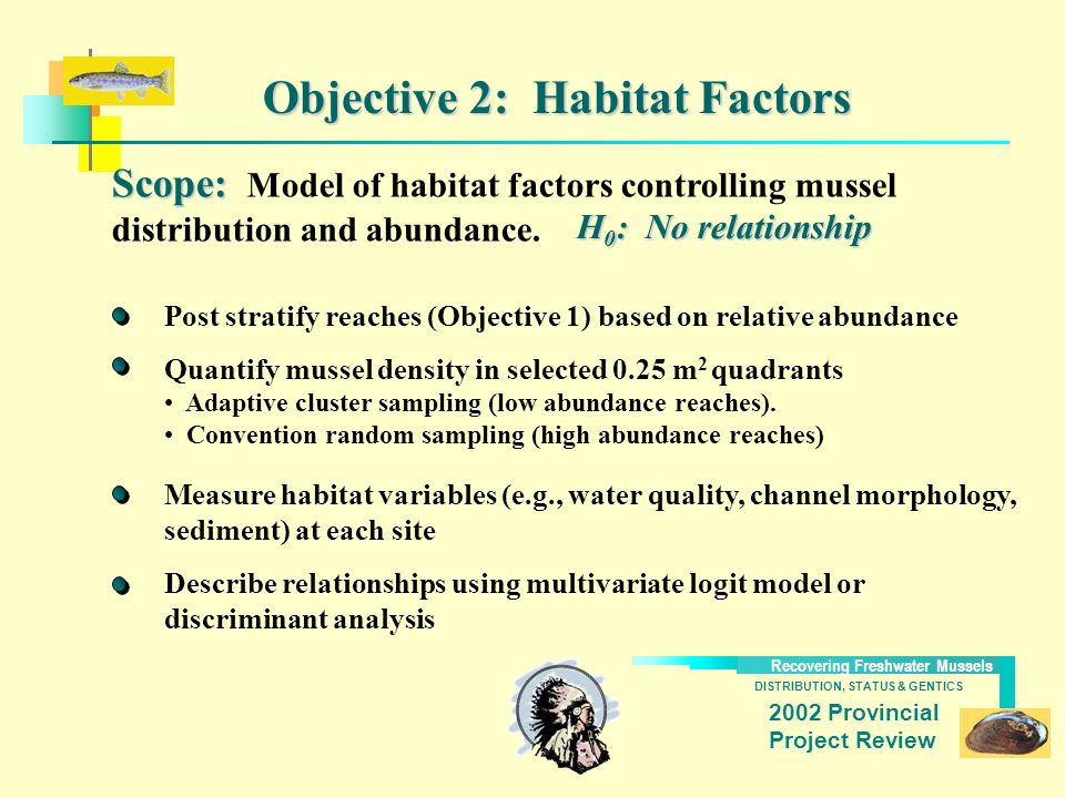DISTRIBUTION, STATUS & GENTICS Recovering Freshwater Mussels 2002 Provincial Project Review Objective 2: Habitat Factors Scope: Scope: Model of habita