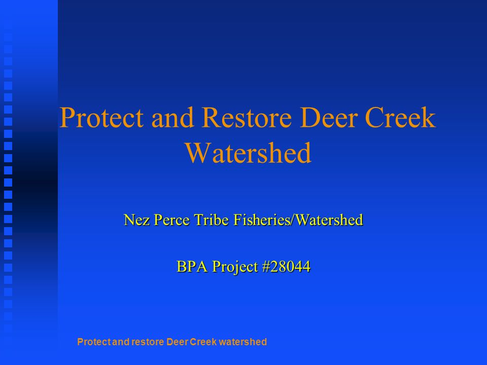 Protect and restore Deer Creek watershed Protect and Restore Deer Creek Watershed Nez Perce Tribe Fisheries/Watershed BPA Project #28044
