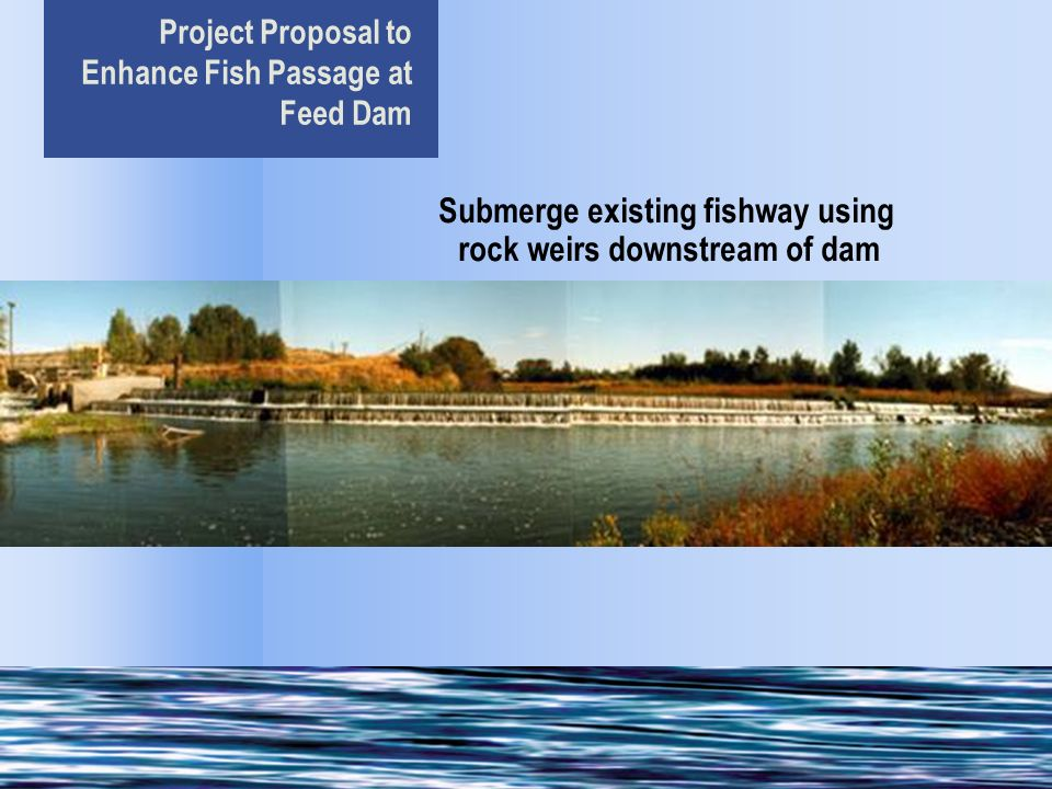 Project Proposal to Enhance Fish Passage at Feed Dam Submerge existing fishway using rock weirs downstream of dam