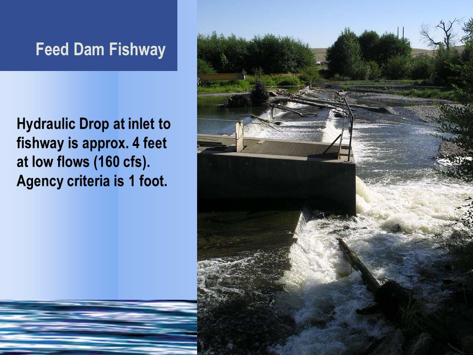 Feed Dam Fishway Hydraulic Drop at inlet to fishway is approx.