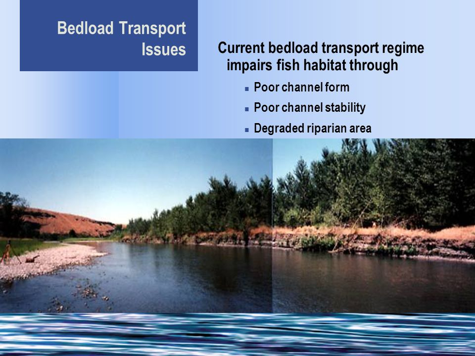 Bedload Transport Issues Current bedload transport regime impairs fish habitat through Poor channel form Poor channel stability Degraded riparian area