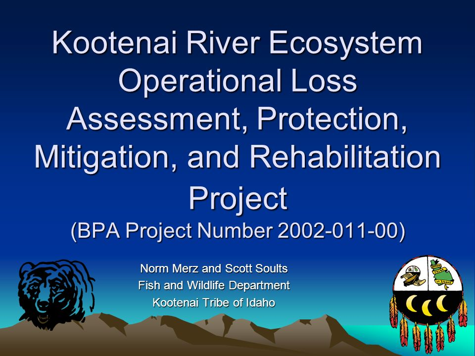 Kootenai River Ecosystem Operational Loss Assessment, Protection, Mitigation, and Rehabilitation Project (BPA Project Number 2002-011-00) Norm Merz and Scott Soults Fish and Wildlife Department Kootenai Tribe of Idaho