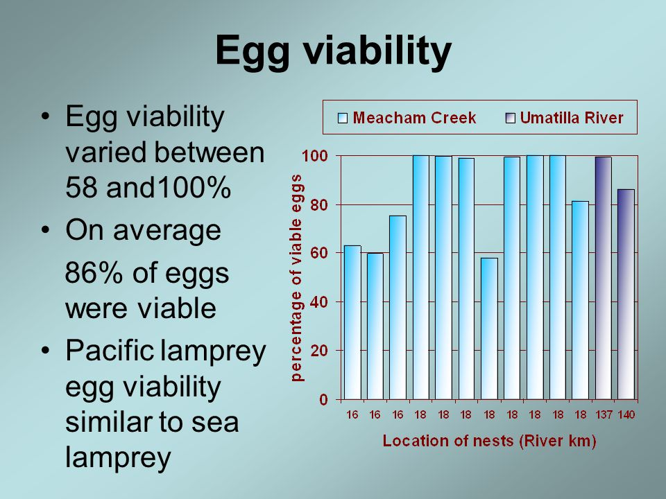 Egg viability Egg viability varied between 58 and100% On average 86% of eggs were viable Pacific lamprey egg viability similar to sea lamprey