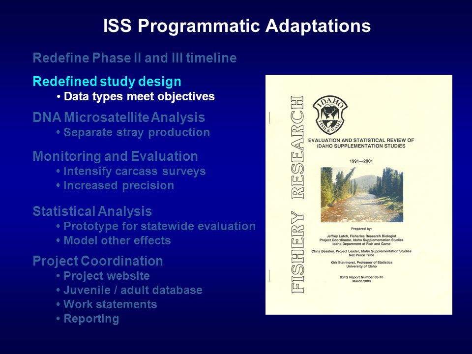 Statistical Analysis Prototype for statewide evaluation Model other effects Monitoring and Evaluation Intensify carcass surveys Increased precision Redefine Phase II and III timeline ISS Programmatic Adaptations DNA Microsatellite Analysis Separate stray production Project Coordination Project website Juvenile / adult database Work statements Reporting Redefined study design Data types meet objectives