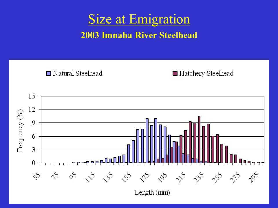 Size at Emigration 2003 Imnaha River Steelhead