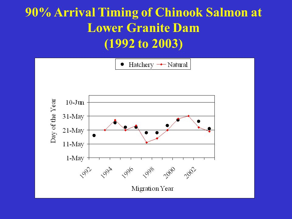 90% Arrival Timing of Chinook Salmon at Lower Granite Dam (1992 to 2003)