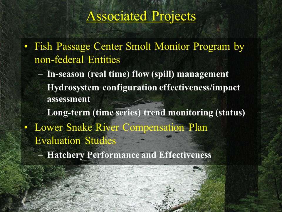 Associated Projects Fish Passage Center Smolt Monitor Program by non-federal Entities –In-season (real time) flow (spill) management –Hydrosystem conf