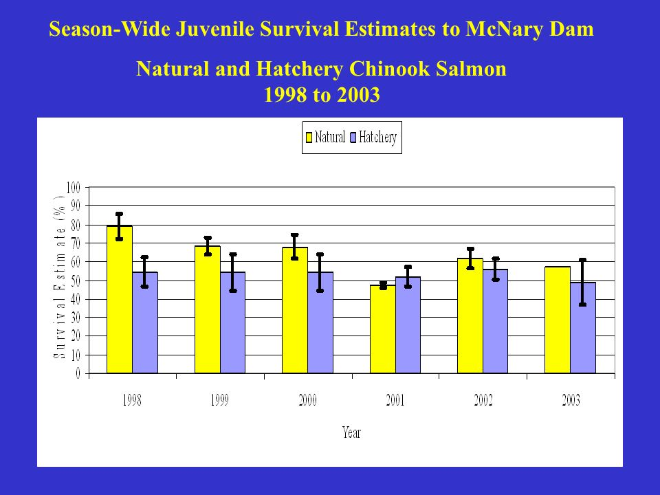 Season-Wide Juvenile Survival Estimates to McNary Dam Natural and Hatchery Chinook Salmon 1998 to 2003
