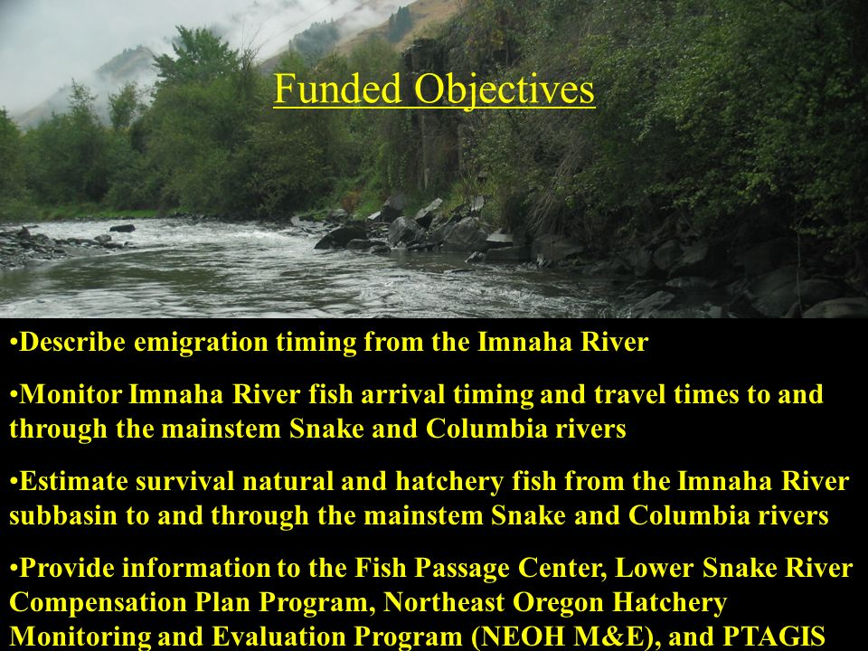 Funded Objectives Describe emigration timing from the Imnaha River Monitor Imnaha River fish arrival timing and travel times to and through the mainst