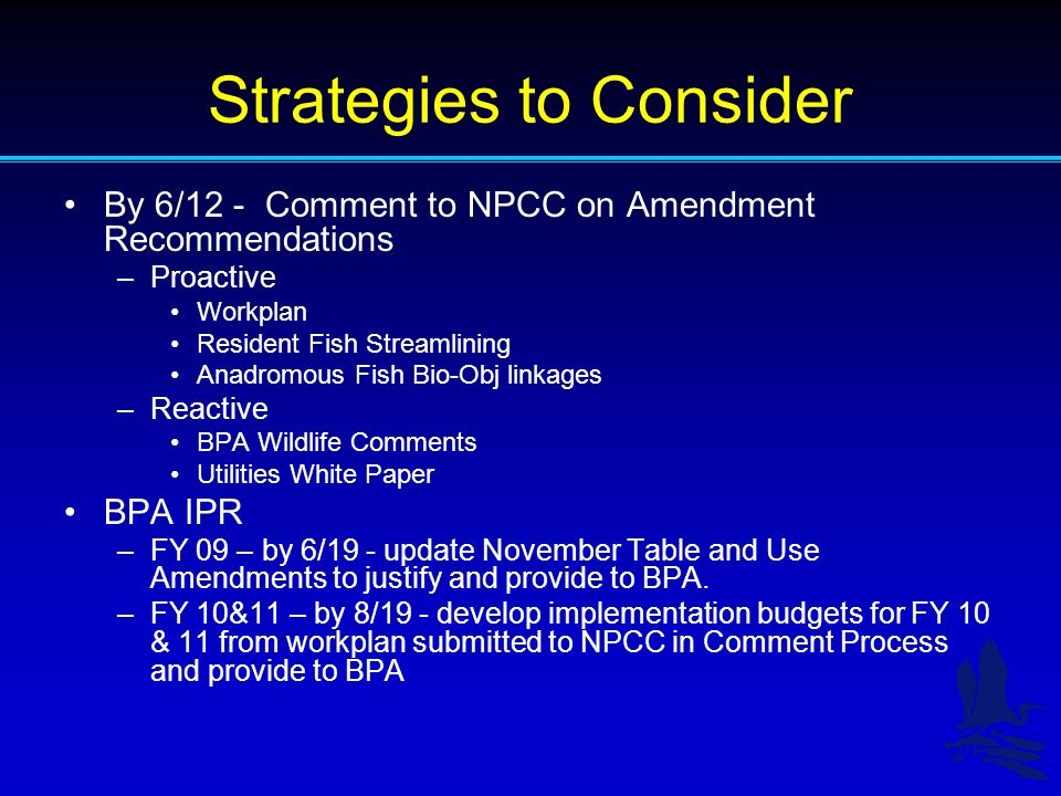 Strategies to Consider By 6/12 - Comment to NPCC on Amendment Recommendations –Proactive Workplan Resident Fish Streamlining Anadromous Fish Bio-Obj linkages –Reactive BPA Wildlife Comments Utilities White Paper BPA IPR –FY 09 – by 6/19 - update November Table and Use Amendments to justify and provide to BPA.