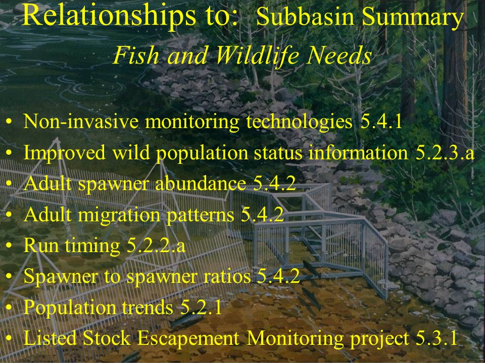Relationships to: Subbasin Summary Fish and Wildlife Needs Non-invasive monitoring technologies 5.4.1 Improved wild population status information 5.2.3.a Adult spawner abundance 5.4.2 Adult migration patterns 5.4.2 Run timing 5.2.2.a Spawner to spawner ratios 5.4.2 Population trends 5.2.1 Listed Stock Escapement Monitoring project 5.3.1