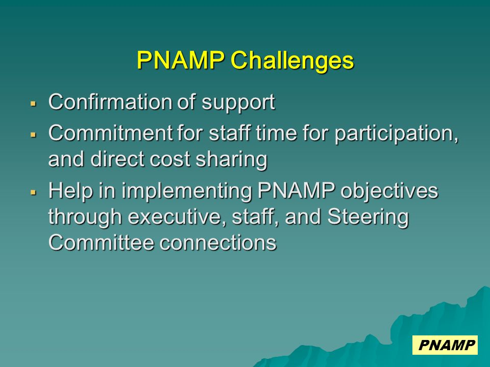 PNAMP Challenges Confirmation of support Confirmation of support Commitment for staff time for participation, and direct cost sharing Commitment for staff time for participation, and direct cost sharing Help in implementing PNAMP objectives through executive, staff, and Steering Committee connections Help in implementing PNAMP objectives through executive, staff, and Steering Committee connections PNAMP