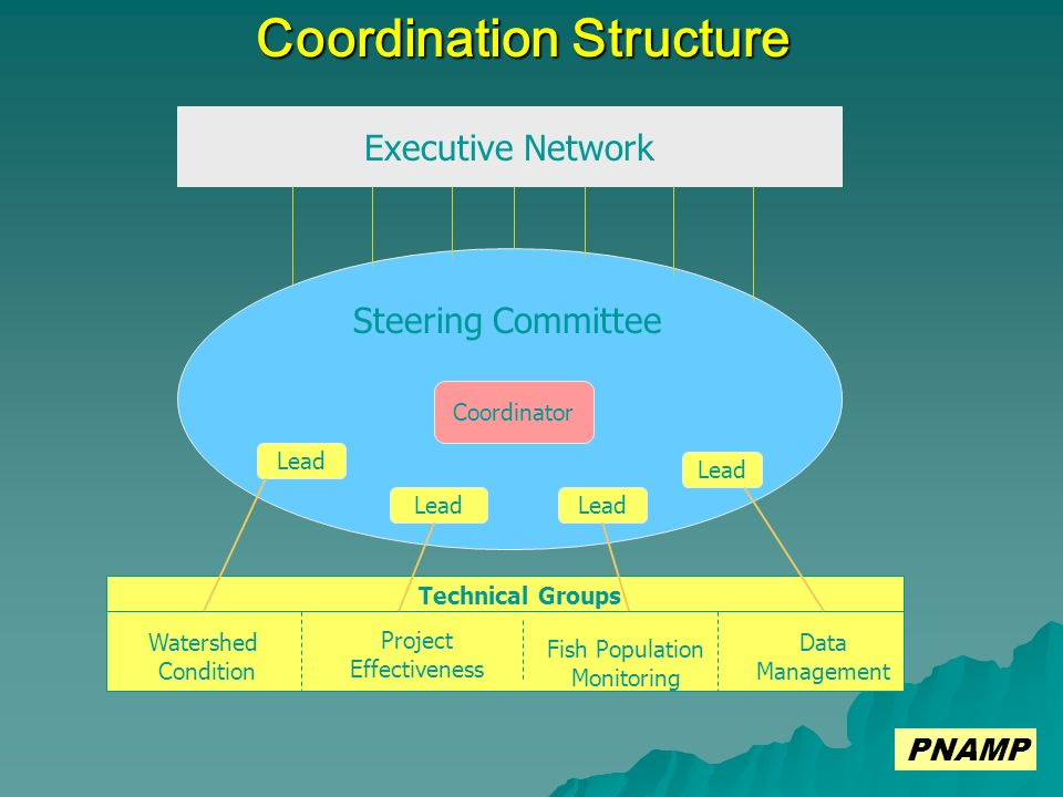 Coordination Structure Executive Network Steering Committee Technical Groups Watershed Condition Project Effectiveness Fish Population Monitoring Data Management Coordinator Lead PNAMP