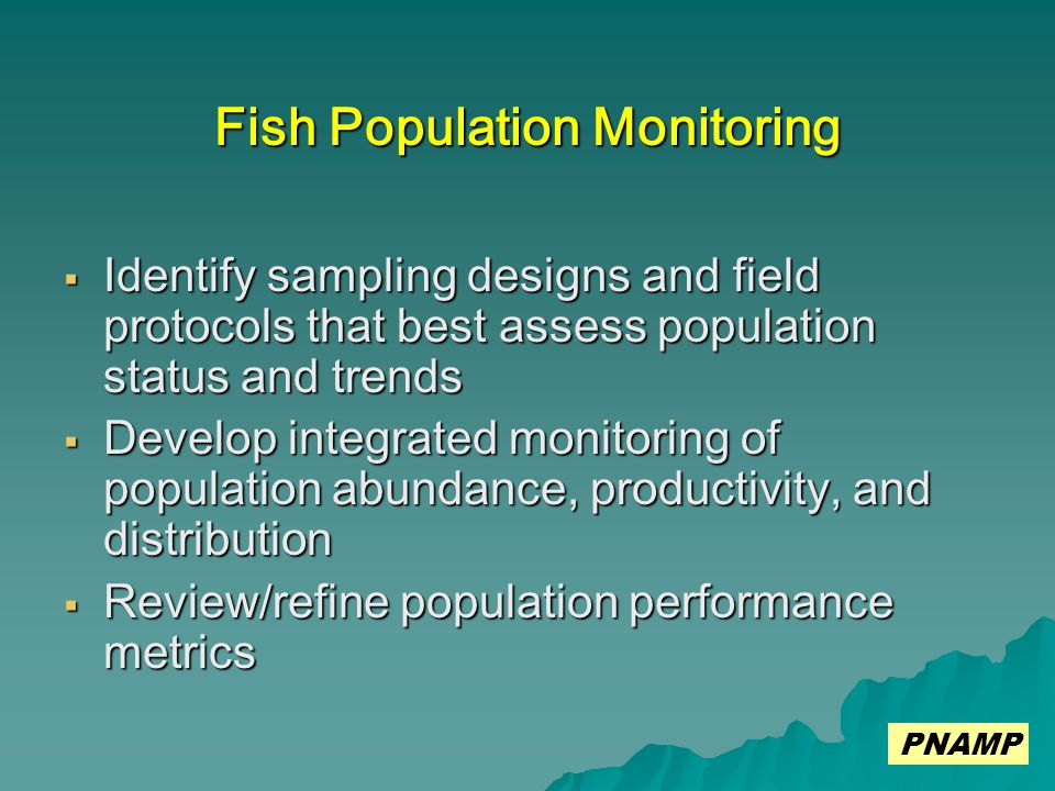 Fish Population Monitoring Identify sampling designs and field protocols that best assess population status and trends Identify sampling designs and field protocols that best assess population status and trends Develop integrated monitoring of population abundance, productivity, and distribution Develop integrated monitoring of population abundance, productivity, and distribution Review/refine population performance metrics Review/refine population performance metrics PNAMP
