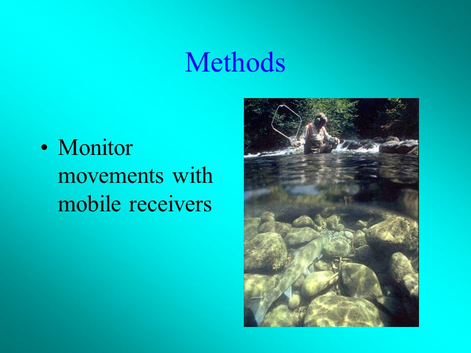 Methods Track using fixed receivers, winter-spring, 2002-2005