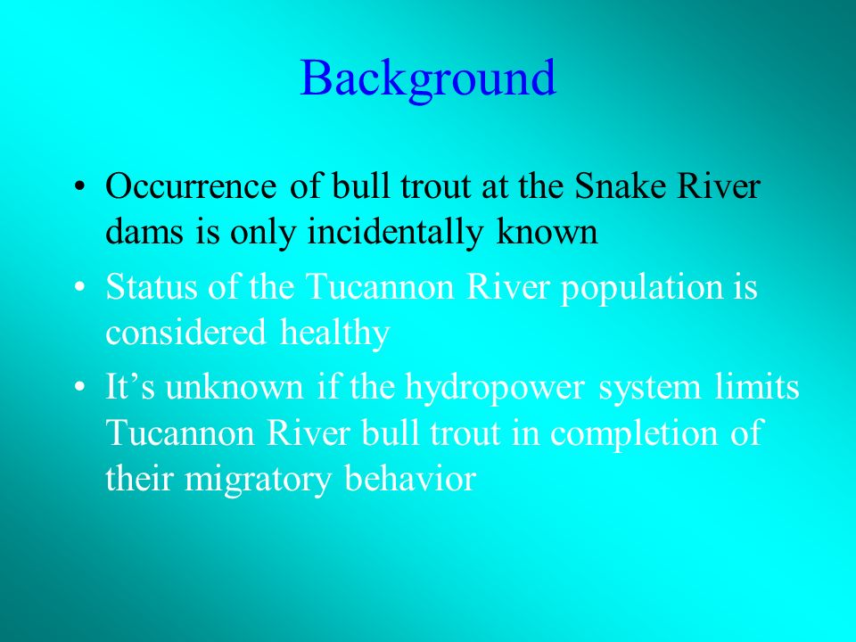 Background Occurrence of bull trout at the Snake River dams is only incidentally known Status of the Tucannon River population is considered healthy Its unknown if the hydropower system limits Tucannon River bull trout in completion of their migratory behavior