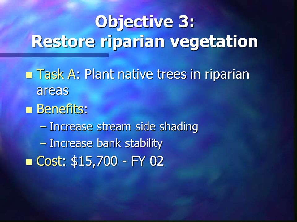 Objective 3: Restore riparian vegetation n Task A: Plant native trees in riparian areas n Benefits: –Increase stream side shading –Increase bank stabi