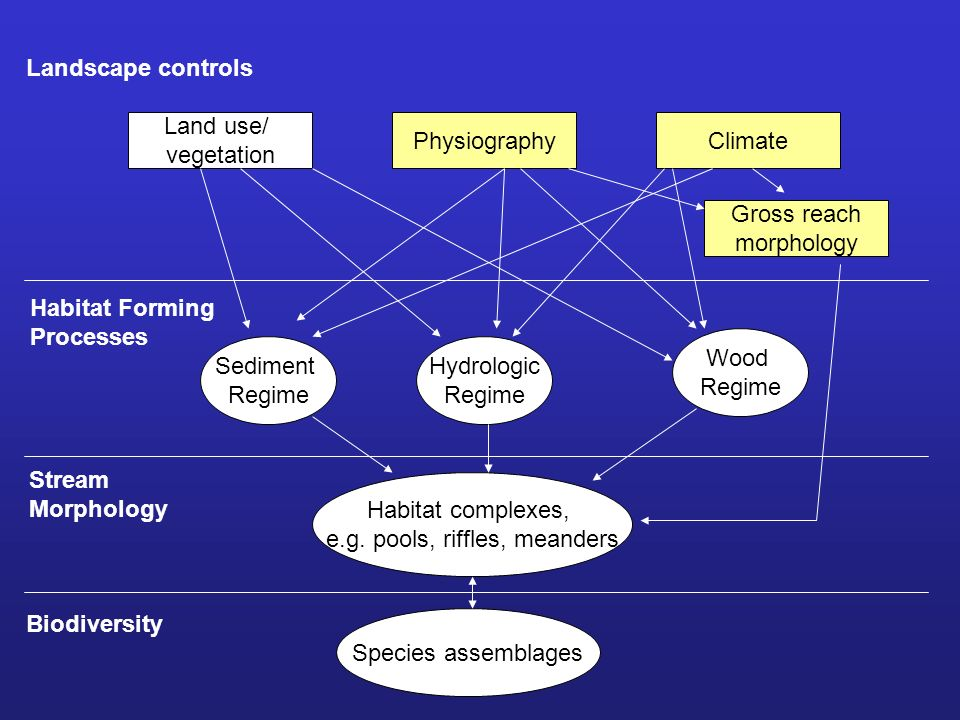 Land use/ vegetation PhysiographyClimate Landscape controls Sediment Regime Hydrologic Regime Wood Regime Gross reach morphology Habitat Forming Processes Habitat complexes, e.g.