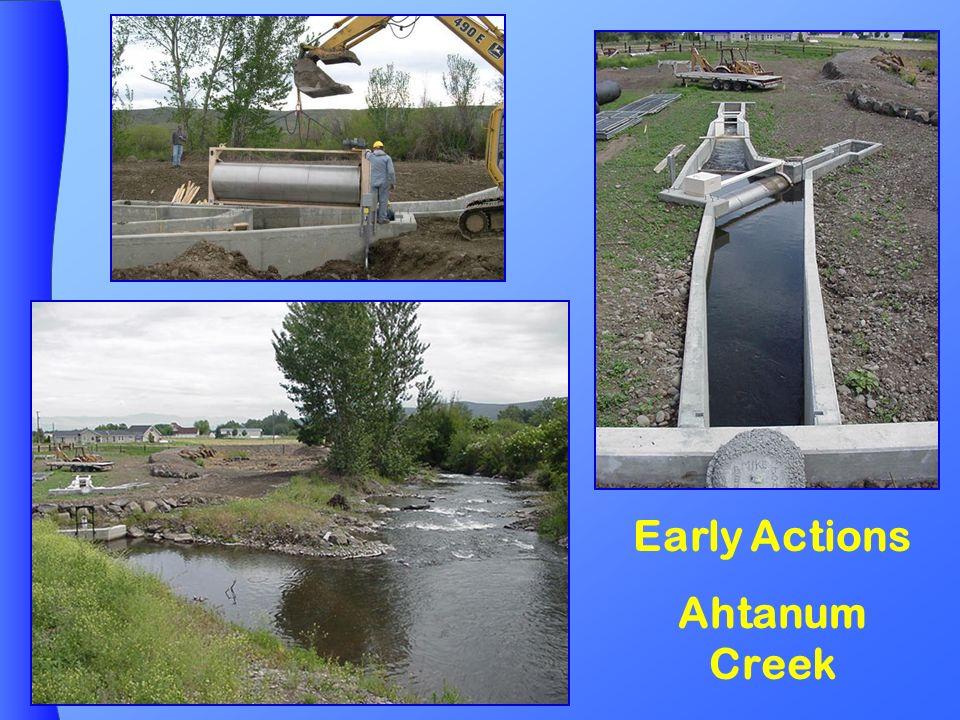 Ahtanum Creek