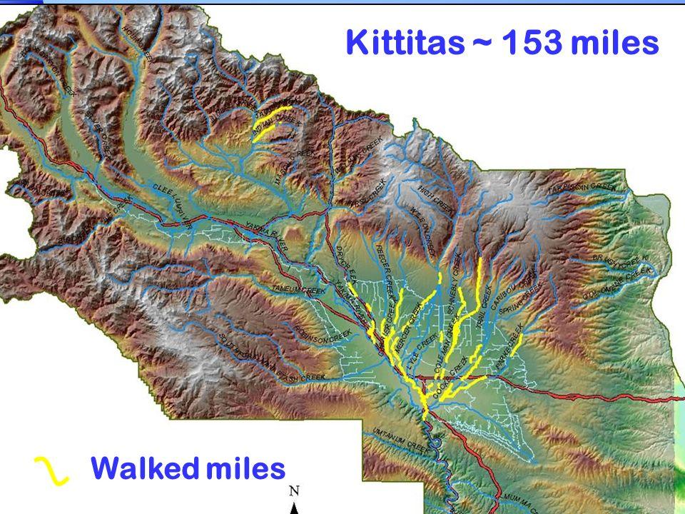 Kittitas ~ 153 miles Walked miles
