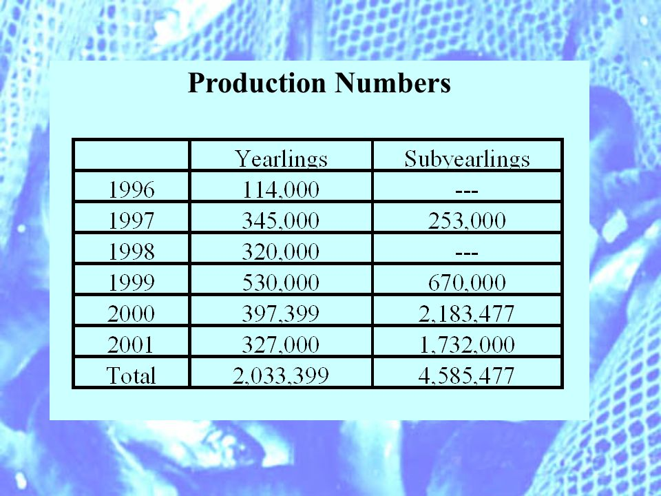 Production Numbers