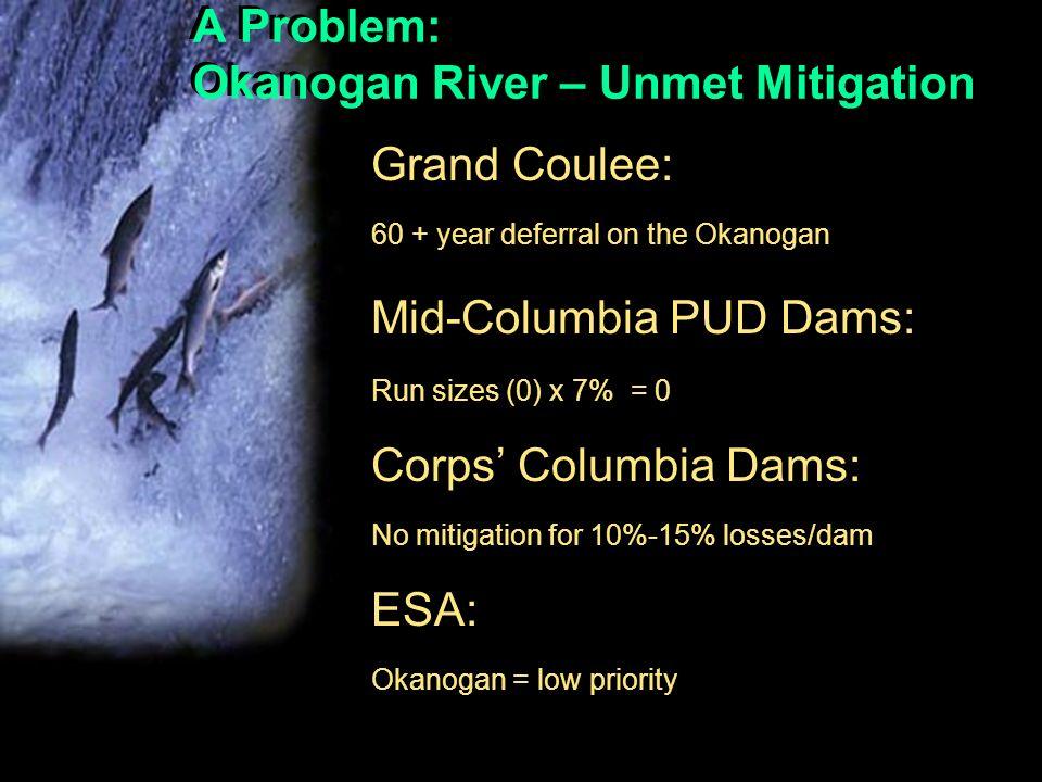 A Problem: Okanogan River – Unmet Mitigation Grand Coulee: 60 + year deferral on the Okanogan Mid-Columbia PUD Dams: Run sizes (0) x 7% = 0 Corps Columbia Dams: No mitigation for 10%-15% losses/dam ESA: Okanogan = low priority