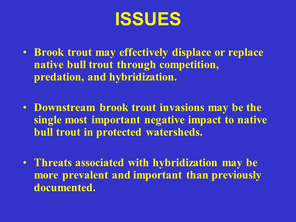 ISSUES Brook trout may effectively displace or replace native bull trout through competition, predation, and hybridization. Downstream brook trout inv