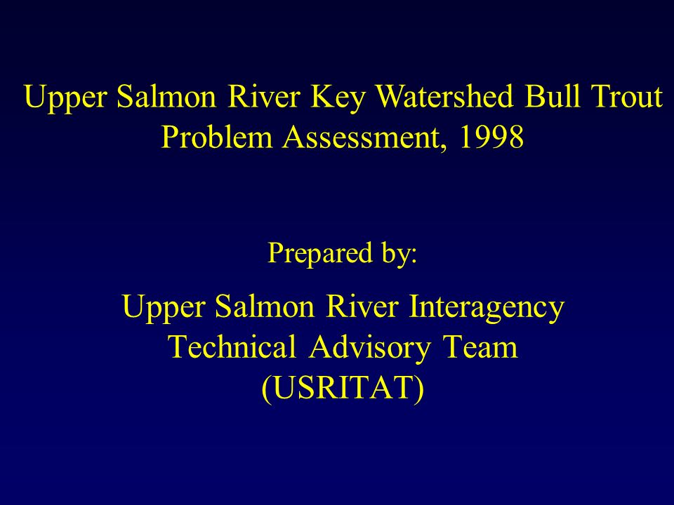 Upper Salmon River Interagency Technical Advisory Team (USRITAT) Upper Salmon River Key Watershed Bull Trout Problem Assessment, 1998 Prepared by: