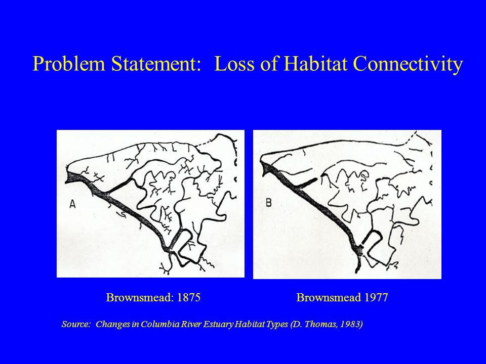 Problem Statement: Loss of Habitat Connectivity Brownsmead: 1875Brownsmead 1977 Source: Changes in Columbia River Estuary Habitat Types (D.