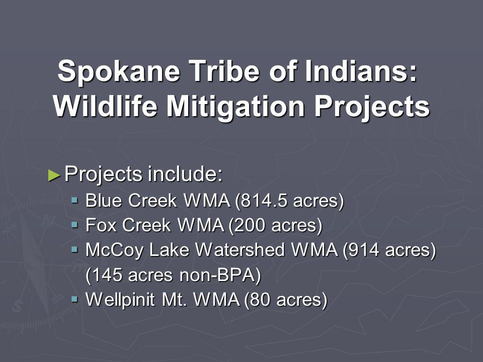 Spokane Tribe of Indians: Wildlife Mitigation Projects Projects include: Projects include: Blue Creek WMA (814.5 acres) Blue Creek WMA (814.5 acres) Fox Creek WMA (200 acres) Fox Creek WMA (200 acres) McCoy Lake Watershed WMA (914 acres) McCoy Lake Watershed WMA (914 acres) (145 acres non-BPA) Wellpinit Mt.