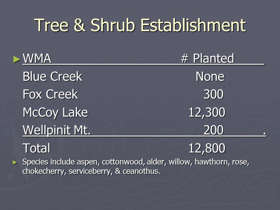 Tree & Shrub Establishment WMA# Planted WMA# Planted Blue Creek None Fox Creek 300 McCoy Lake 12,300 Wellpinit Mt.